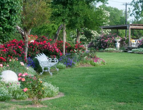 gardens-10